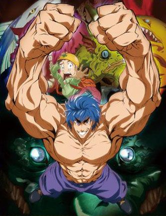 Toriko (2009)(Other)(Complete)